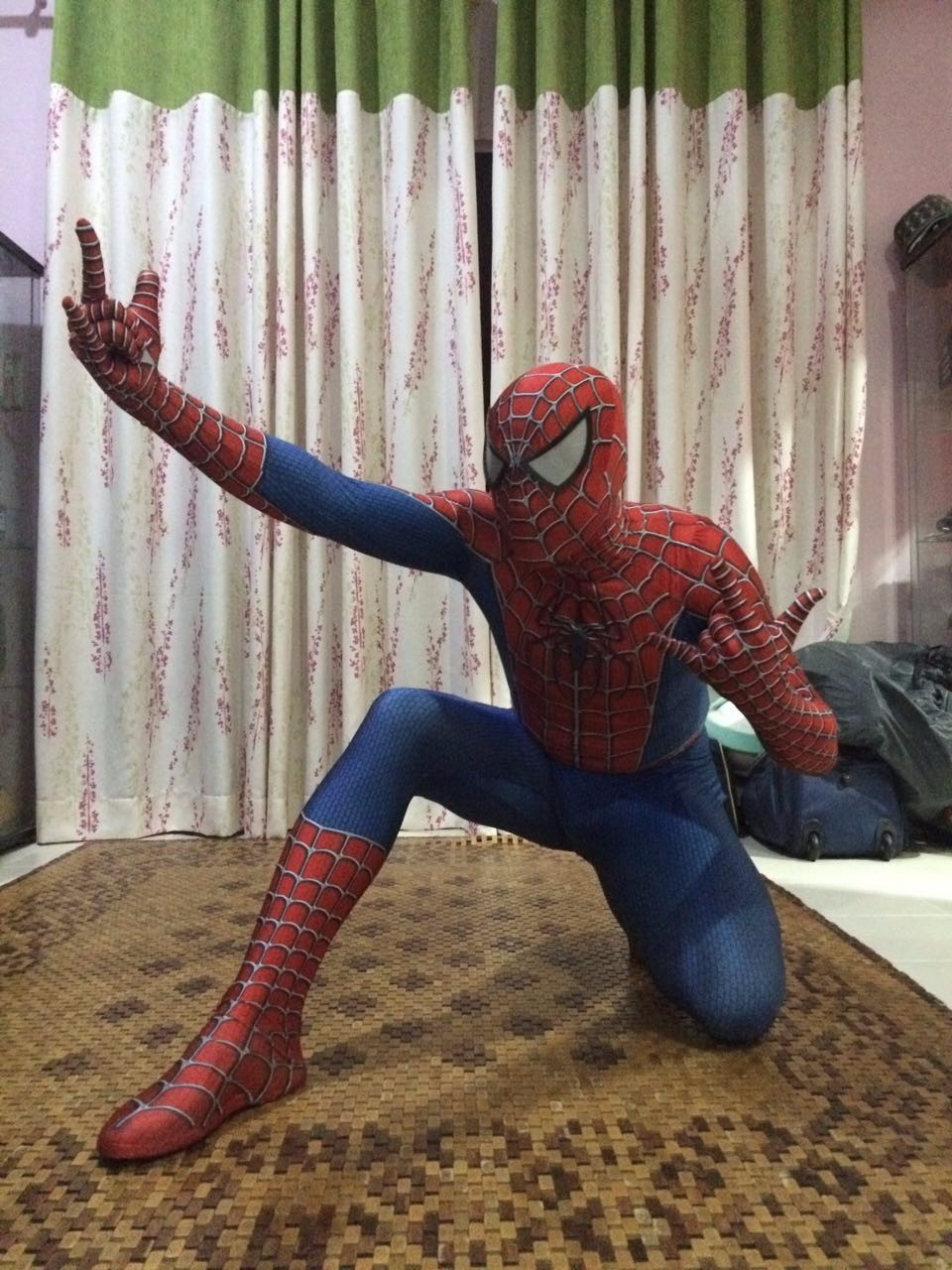 Amazing Spiderman Costumes Halloween 16081209